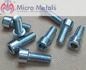 Stainless Steel 317L Bolt manufacturers