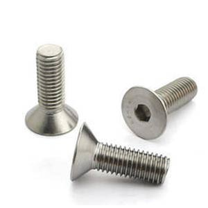 Stainless Steel Countersunk Screws , SS Countersunk Machine