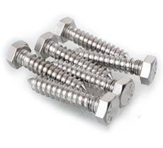Stainless Steel Hex Head Lag Screws