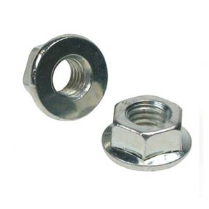 SS Serrated Flange Nuts