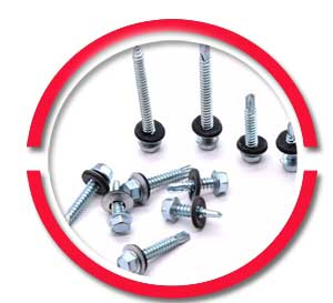 #14 SS Roofing Screws