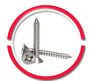 316 SS Self Tapping Screws