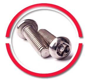316 Stainless Steel Torx Screws