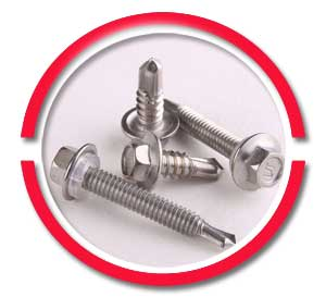 DIN 1.4404 hex head screws