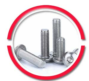 A2-70 Stainless Steel Screws