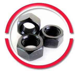 ASTM a193 b16 nuts