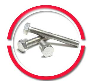 ASTM Stainless Steel Bolts