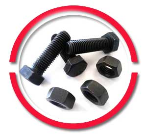 CS Nuts And Bolts