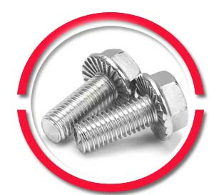 m6 stainless steel flange bolts