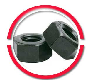 Sa 194 Gr 2hm Heavy Hex Nuts