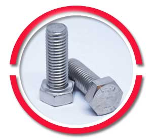 SS Heavy Hex Bolts