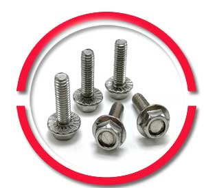 SS Toilet Flange Bolts
