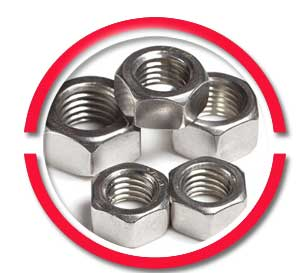 310 Stainless Steel Nuts