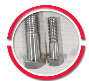 Alloy 2205 Bolts